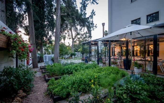 Garden at Hotel Lear in Gedera